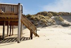 plage piquets bois
